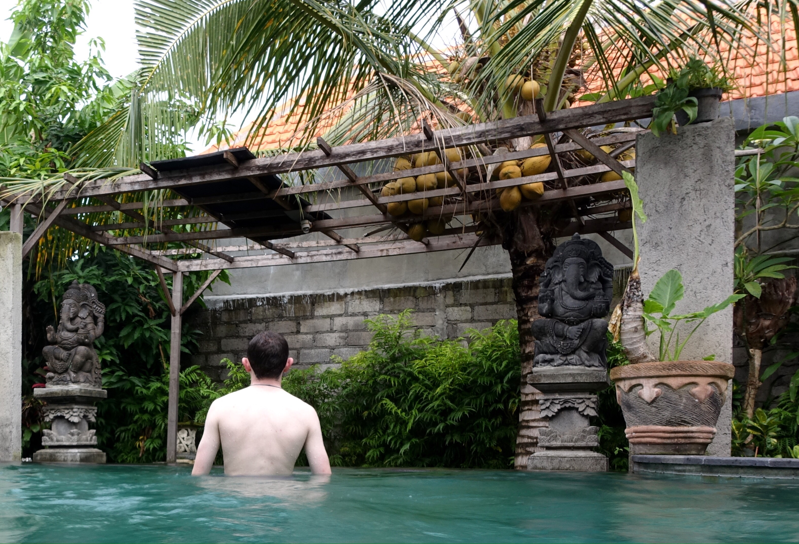 Picture of author in pool in Ubud Indonesia