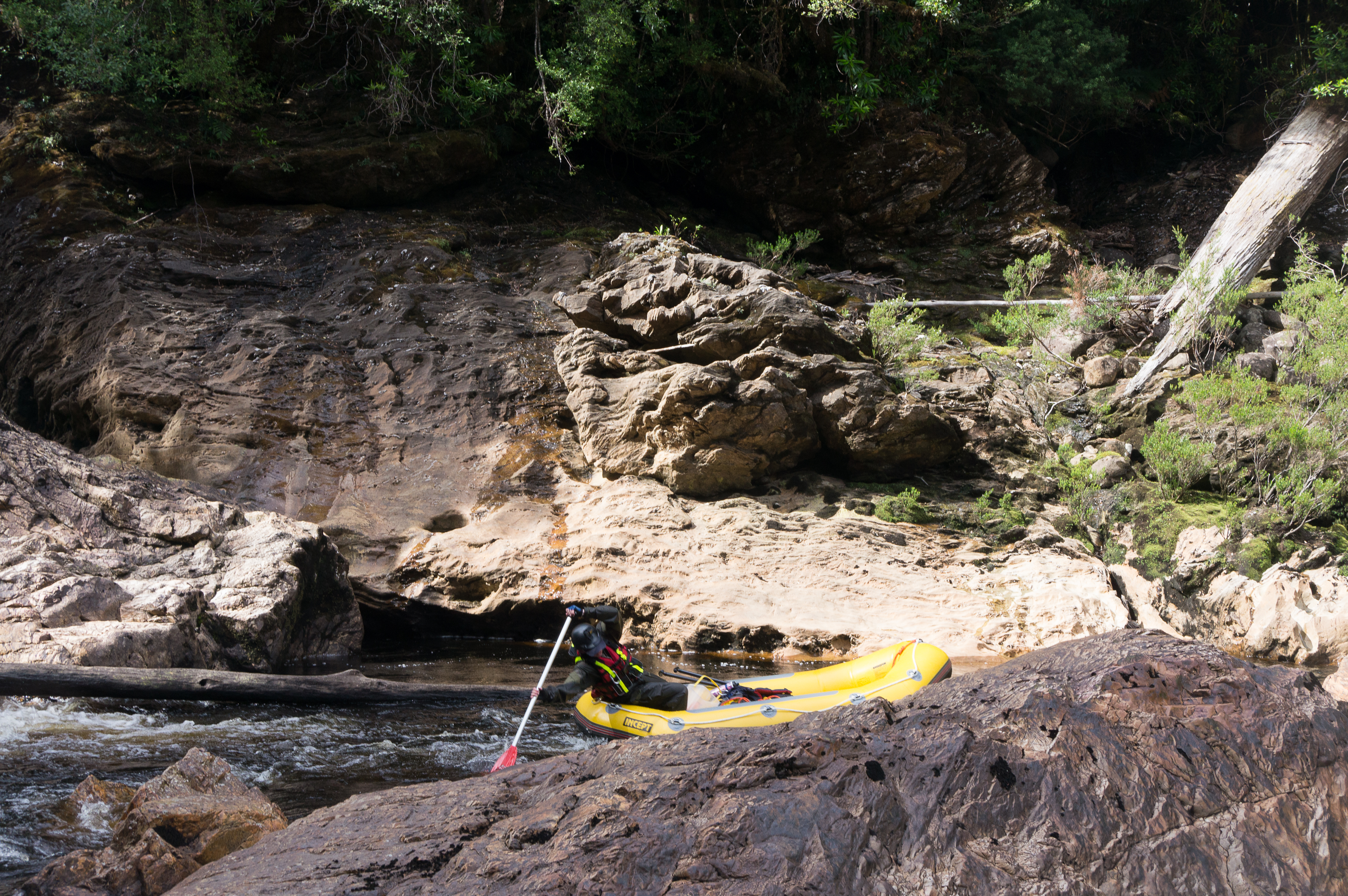 Picture of raft guide paddling a section of river